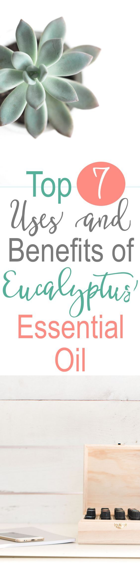 Eucalyptus essential oil has so many great uses and benefits. The broad range of health benefits of this oil come from the organic chemical compound cineole. Here are the top 10 eucalyptus essential oil uses! Also, find out which essential oils blend well with Eucalyptus when creating your own diffuser blends and essential oil recipes!✨\\ www.simplyreeni.com