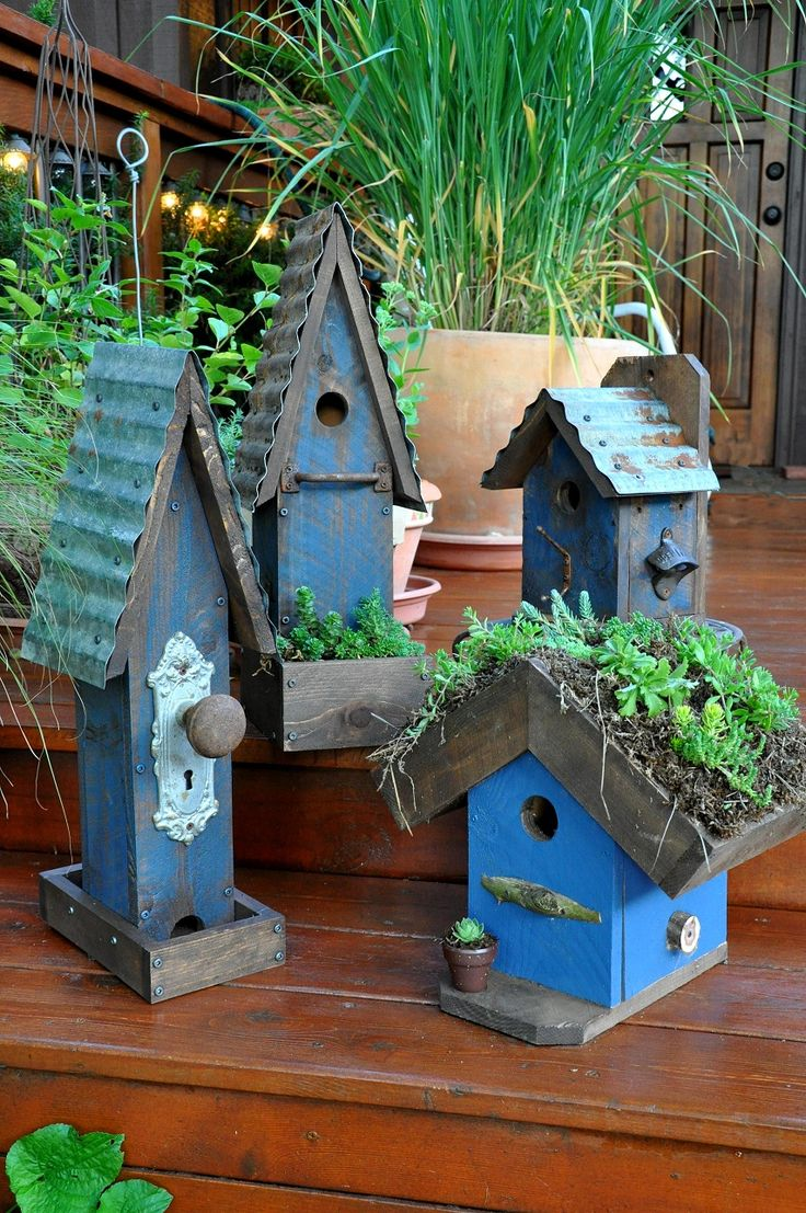 Blue birdhouses and feeders!