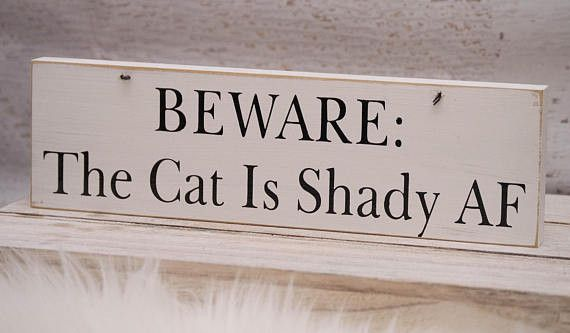 The Cat Is Shady Sign | Cat Gift | Funny Beware Of Cat Sign – New2UDesign
