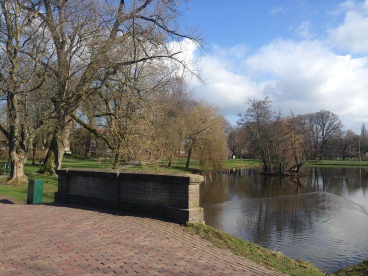 Het Kamper stadspark is een van de mooiste stadsparken van Nederland en dat al meer dan 100 jaar. Toch plaatsen sommige mensen vraagtekens bij de staat het park, want verdwijnt er niet steeds meer groen?