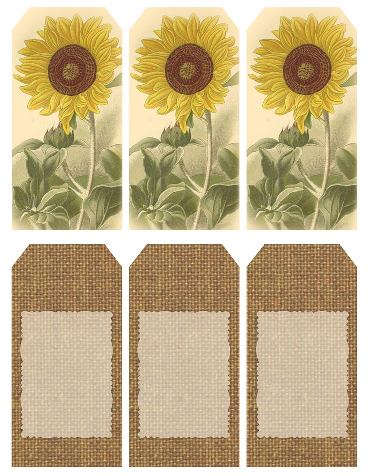 """""""Those Who Bring Sunshine..."""" ~ Printable sheet of 6 sunflower and burlap tags"""
