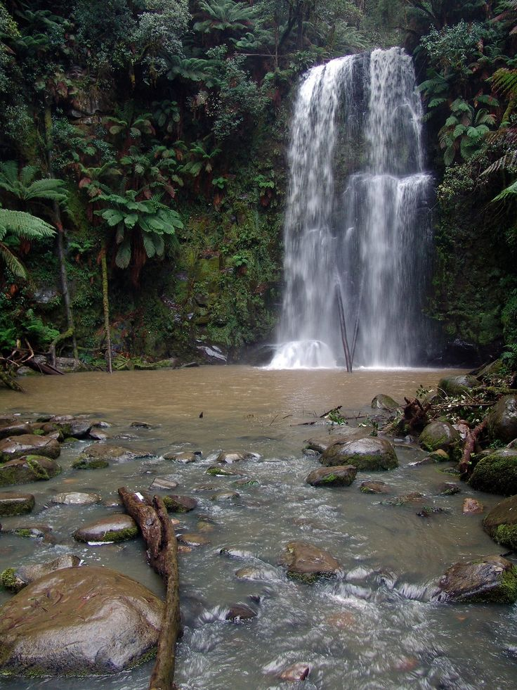 Jungle Falls by SHADOWMAC PHOTOGRAPHY on 500px
