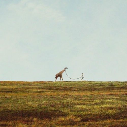 I would never complain about taking my pet out for a walk if it were a Giraffe.