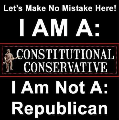 Constitutional conservative because there is only one party. The Democrats AND the Republicans are one and the same.
