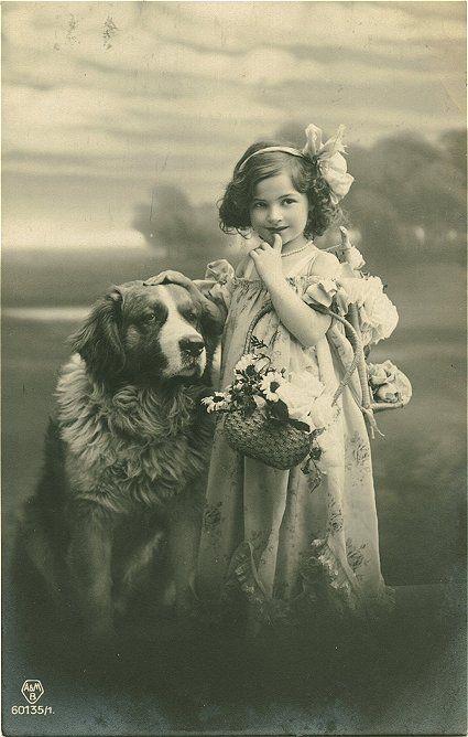 Girl with Bernhardiner dog