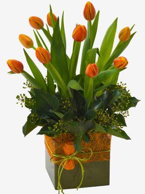 Monique: Arreglo de tulipanes con delicado follaje en una base de latón.