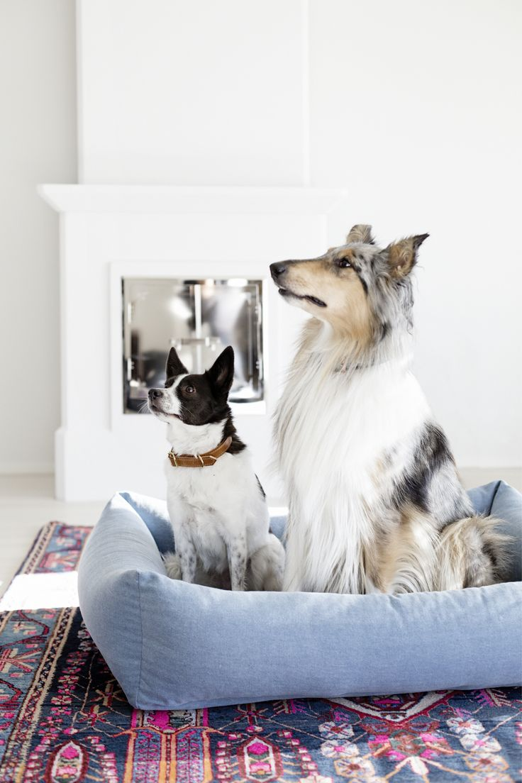 Kind - The soft edges of the Oma paikka dog bed make this the perfect safe haven for your dog. Find more about Oma paikka dog bed - http://www.kindfordogs.com/product/7/oma-paikka-dog-bed-denim