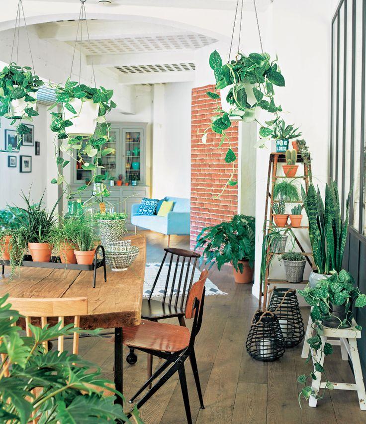 Une décoration bois et végétale pour un printemps frais et ensoleillé truffaut