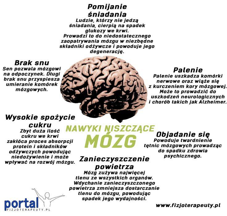Nawyki niszczące mózg 5 (100%) 2 ocen Zobacz również: Mózg to 2% masy ciała Mózg..