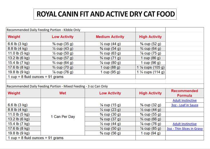 Cat feeding guide in 2020 cat feeding guide cat feeding