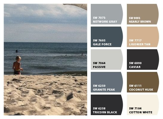 Sherwin-Williams Color Snap Visualizer-Network Gray, Gale Force, Passive, Granite Park, Tricorn Black