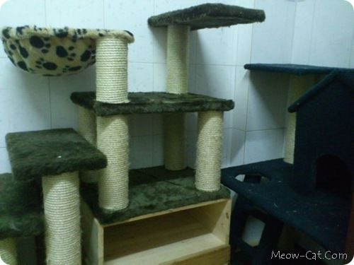 Free Cat Tree Tower Wood Working Plans with detailed photo instructions and supply list DIY kitten house tutorial with scoop bed