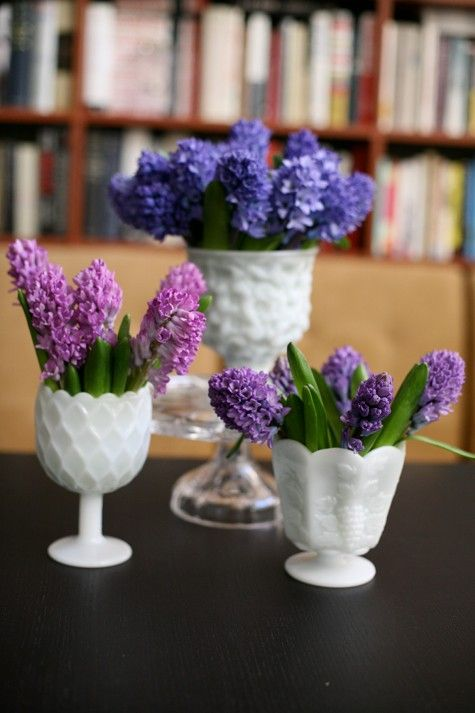 jacinthes en verres blancs......milk glass and purple flowers for the tables (LOOK HUNKA-- I made a decision!!!)