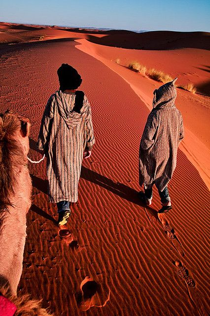 Morocco - Sahara: Desert Guide by John & Tina Reid, via Flickr    Berber nomads guide their camels through the Sahara desert