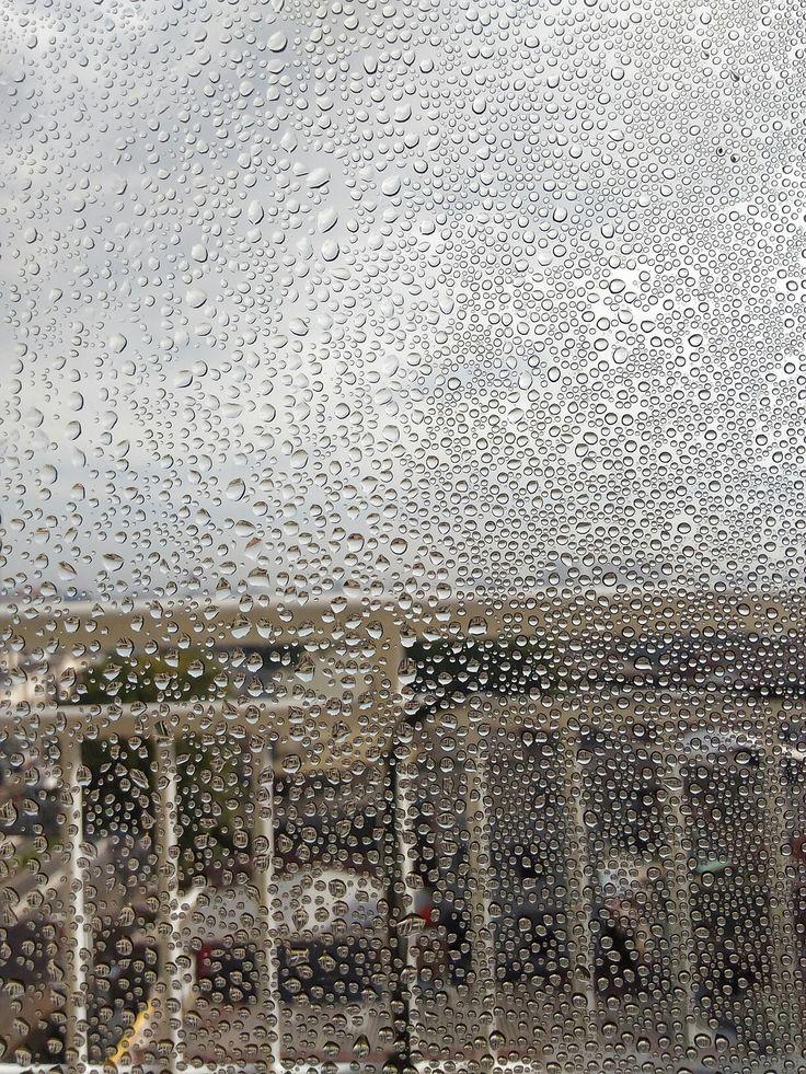 Dewdrop 📷novillaayu