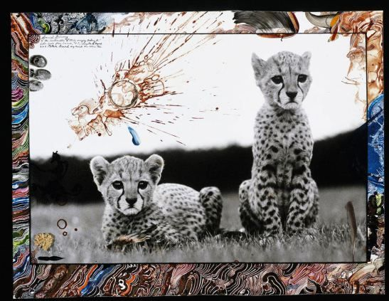 Peter Beard // dual personality? // double personnalité?