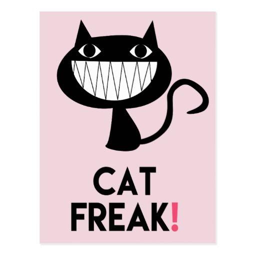 Cat Freak! Fun Postcard