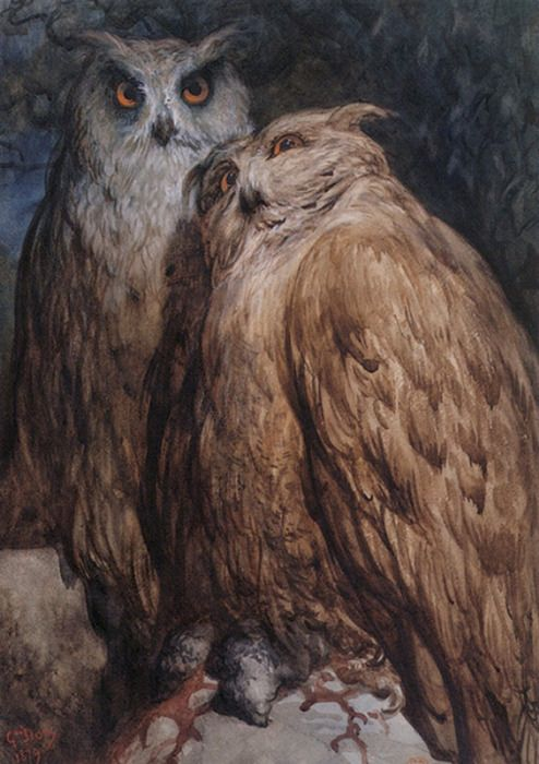 Gustave Doré (French, 1832-83) ~ Two Owls