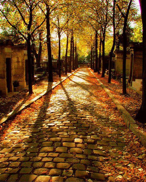 Cobblestone street in the Fall