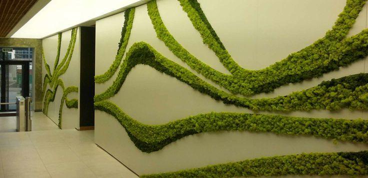 decorazioni vegetali