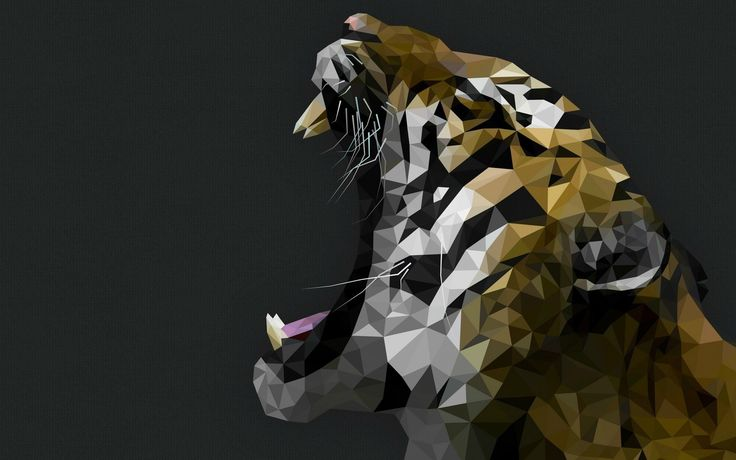 #1918941, tiger category - free high resolution wallpaper tiger