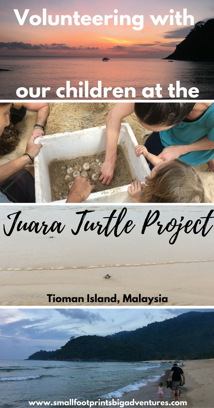 s volunteering with children difficult? What is involved? And did we make a difference? This is our story of our week-long experience helping a sea turtle project in Malaysia. #volunteering#tiomanisland#seaturtles#volunteeringwithkids#malaysia#islandtravel