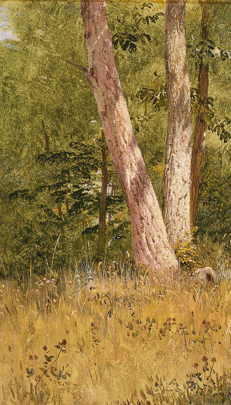 The Athenaeum - Landscape with Two Trees (Frederic Edwin Church - )