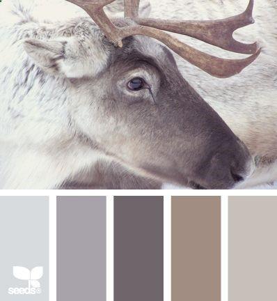 reindeer tones color palette. earth brown, tan, gray, cream color scheme.