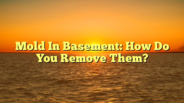 Mold In Basement: How Do You Remove Them? - http://4gunner.com/mold-in-basement-how-do-you-remove-them/