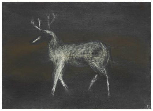 Night Visitor (drawing) Pamela Carr 2009