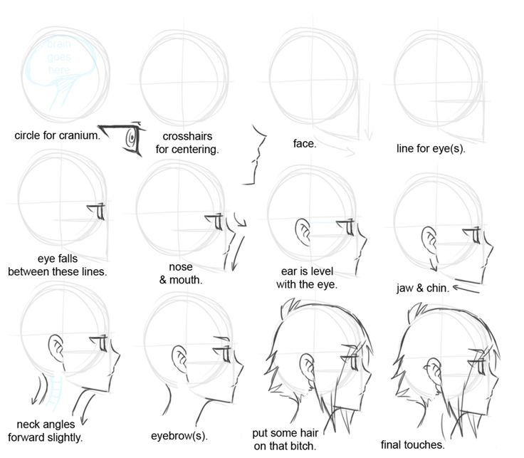 This is a good one, drawing heads side view is hard. | Art ...