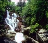 Great site for waterfalls in the Smokies...Ramsey Cascades, at 100 feet high, is the tallest waterfall in the park.