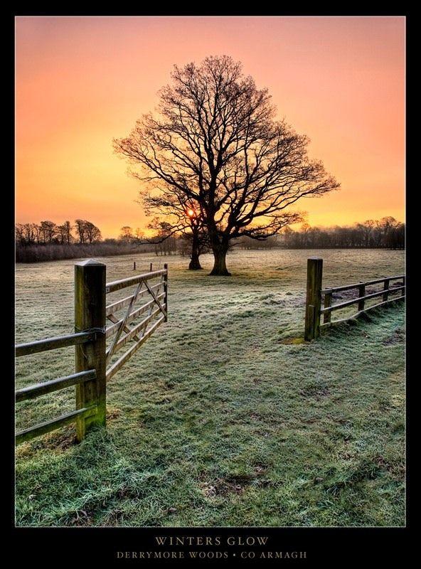Winters Glow, Bessbrook, Armagh, Northern Ireland Copyright: Gary McParland
