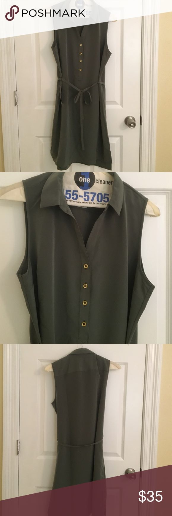 Olive green shirt dress Very cute green shirt dress with gold buttons. Perfect for work! Brand new! The Limited Dresses