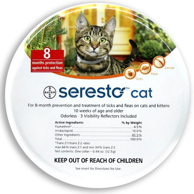 Animals Dog: Seresto Collar Cat Tick Flea Fleas 8 Months Protection English Instructions Cats -> BUY IT NOW ONLY: $36.99 on eBay!