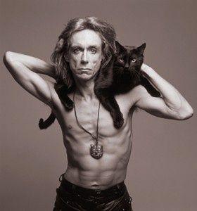 Ageless rock rebel Iggy Pop wearing his feline pet on his shoulders.