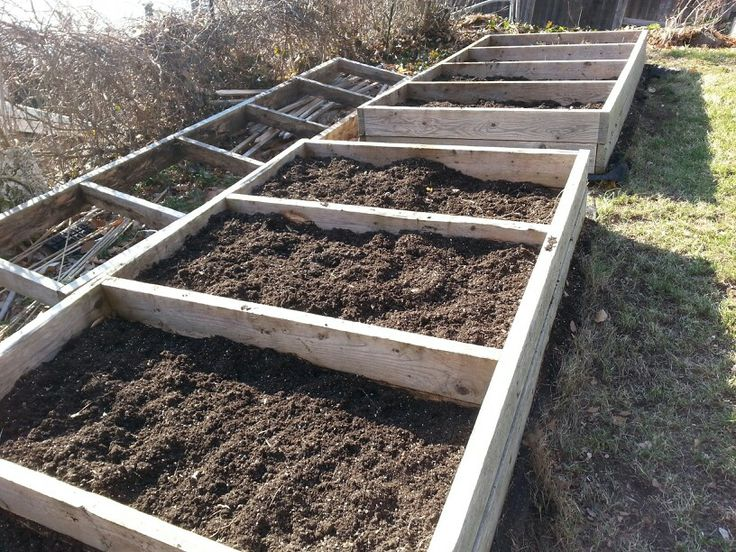 Preparing The Raised Beds For Vegetable Garden Garden Pinterest Gardens Bedding And