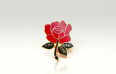 #England rose pin badge - #support your english england team and #country,  View more on the LINK: http://www.zeppy.io/product/gb/2/272023583127/