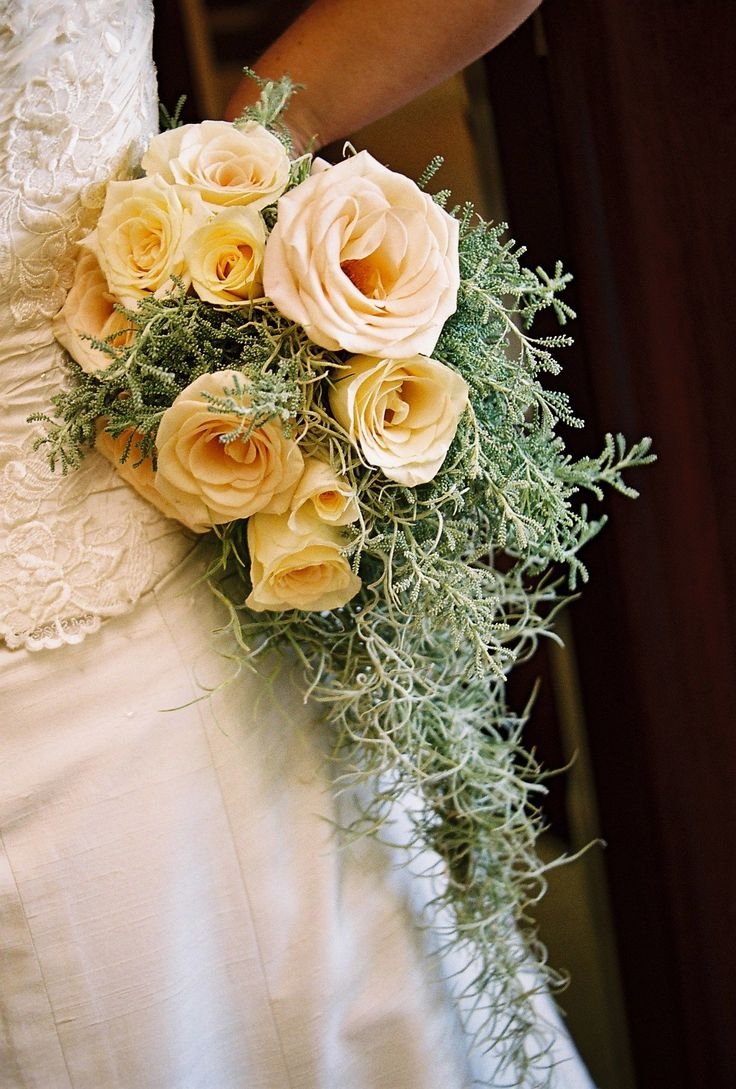 Spanish moss for crafts - Cream Roses With A Cascade Of Spanish Moss