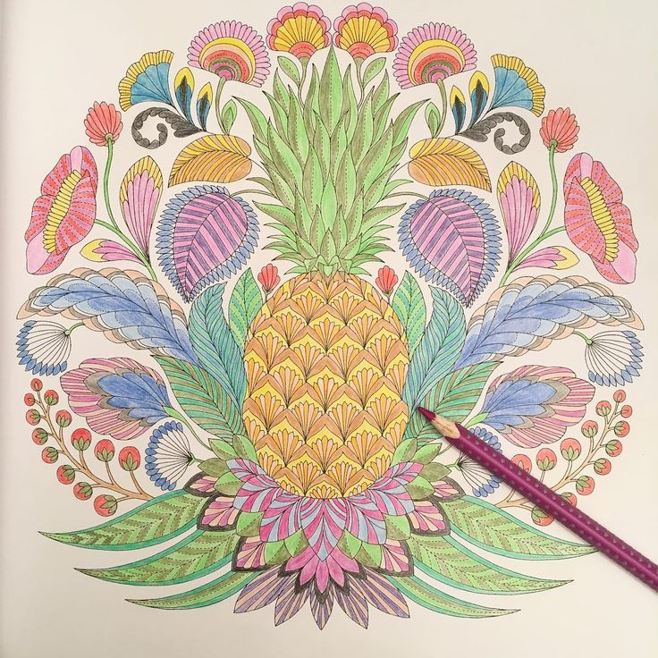 Beautiful Physiology Coloring Book Small Doodle Coloring Book Clean Alphabet Coloring Book The Big Coloring Book Of S Youthful Paisley Designs Coloring Book PinkWedding Coloring Book Template 154 Best Ac Fruit Images On Pinterest   Coloring Books, Adult ..