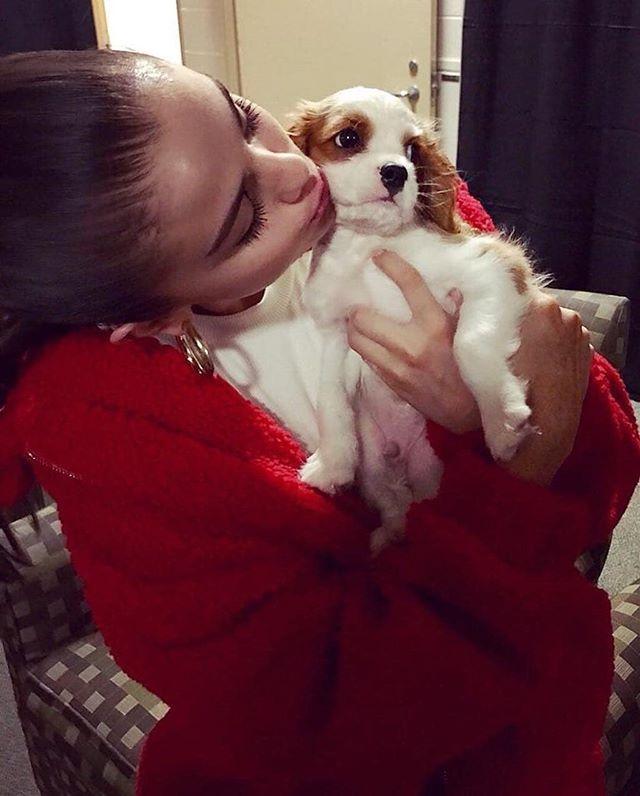 Selena Gomez with her puppy  Charlie  @selenagomez con su perrito  Charlie  #SelenaGomez #BadLiar #BestMusicVideo #iHeartAwards