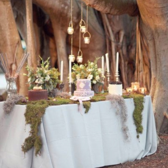 rustic chic: Dessert Tables, Ideas, Hanging Lights, Floral Design, Sweets Tables, Fairytale Wedding, Cake Tables, Desserts Tables, Botanical Gardens