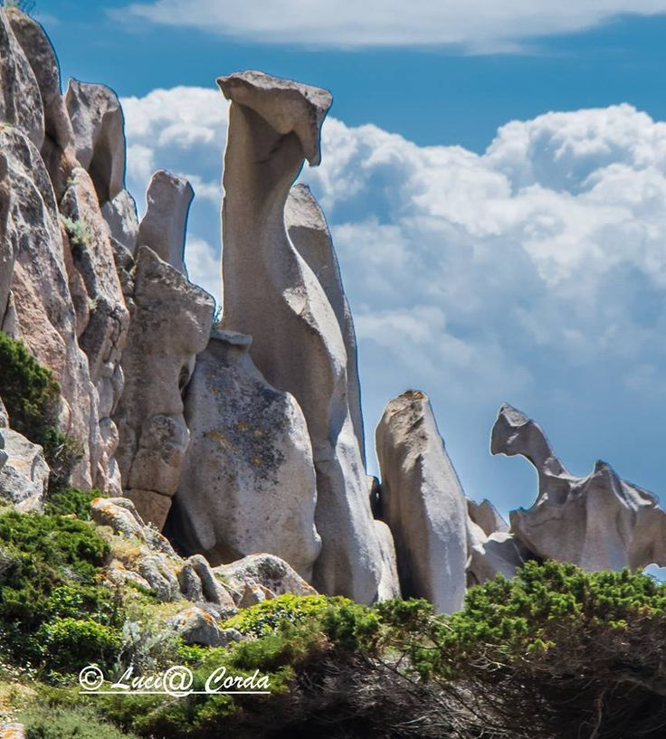 Rocce - Santa Teresa di Gallura-Sardegna