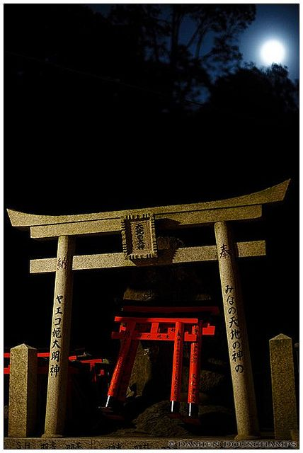 Fushimi Inari Taisha at night, Jpan