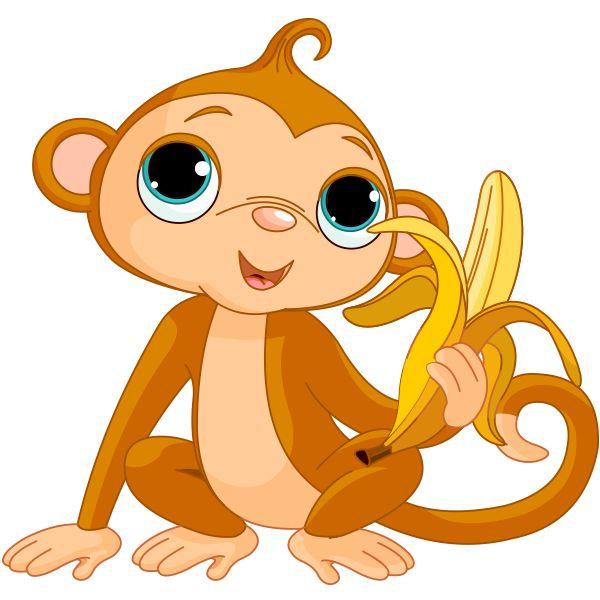 Big-Eyed Monkey