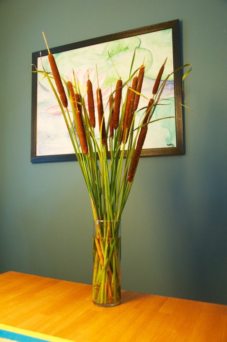 Cat tails on my table! They look as good as any flower arrangement.: Cat Tails, Fish Birthday, Birthday Arrangements