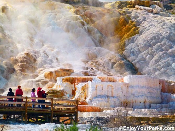 The mammoth hot springs in yellowstone national park for Jackson hole wyoming honeymoon cabins