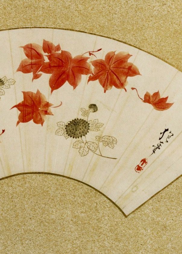 Detail. Fan Painting. Autumn Leaves and Chrysanthemum. Attributed to 酒井抱一 Sakai Hōitsu, Japanese, 1761 - 1828. Philadelphia Museum of Art.