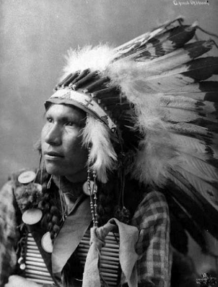 sioux indians essay Introduction dozens of native nations lived on the great plains including the sioux indians, also known as the lakota or dakota the name sioux means little snakes.