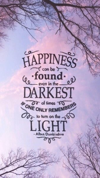 Happiness can be found darkest of times if one only remenbers to turn on the light